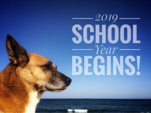 2019年の英語学校が始まります